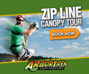 vermont zip line canopy tour and adventure park - arbortrek canopy adventures